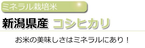 29年産新潟県コシヒカリ玄米10kg送料無料,ミネラル栽培米コシヒカリ,減農薬米コシヒカリ
