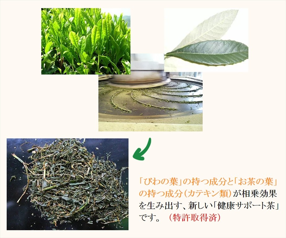 肥前爽身茶5