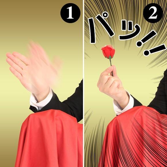 簡単手品セット 指先からバラ
