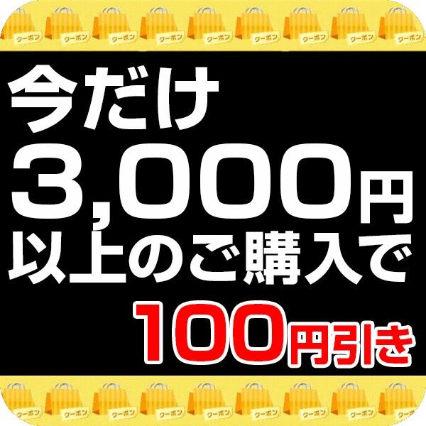 今だけ!100円offキャンペーン開催