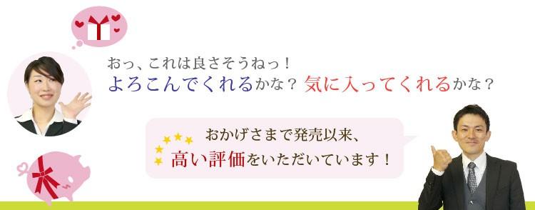 miffy×imabari towel japan