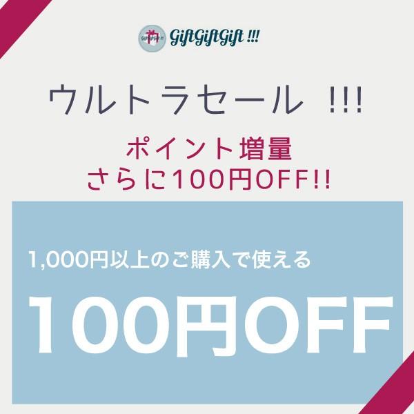 1000円以上ご購入で使えるクーポン100円OFF!【当店限定セール】