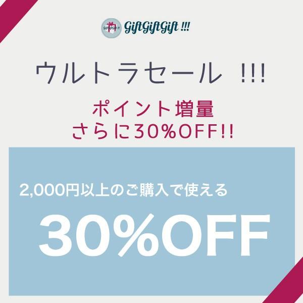 2000円以上ご購入で使えるクーポン30%OFF!【当店限定セール】