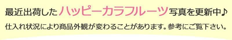ハッピー日付更新