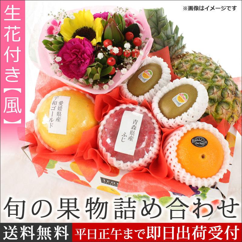 お祝い用 旬の果物の詰め合わせ