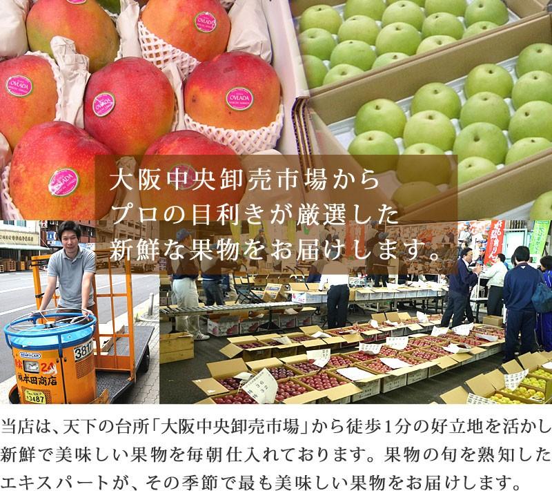 大阪中央卸売市場から新鮮で美味しい果物を全国発送