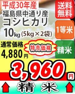 中コシ精米10