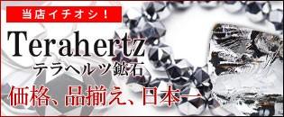 日本一の価格と品揃えテラヘルツ