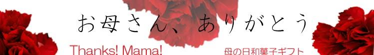 母の日スイーツ 和菓子ギフト 横浜磯子風月堂