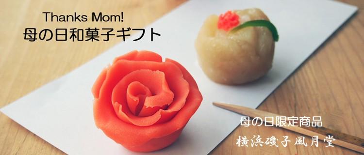 母の日和菓子ギフト カーネーション 磯子風月堂