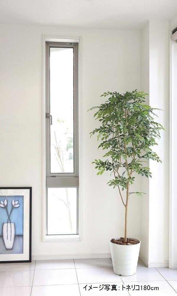 造花のグリーンアート