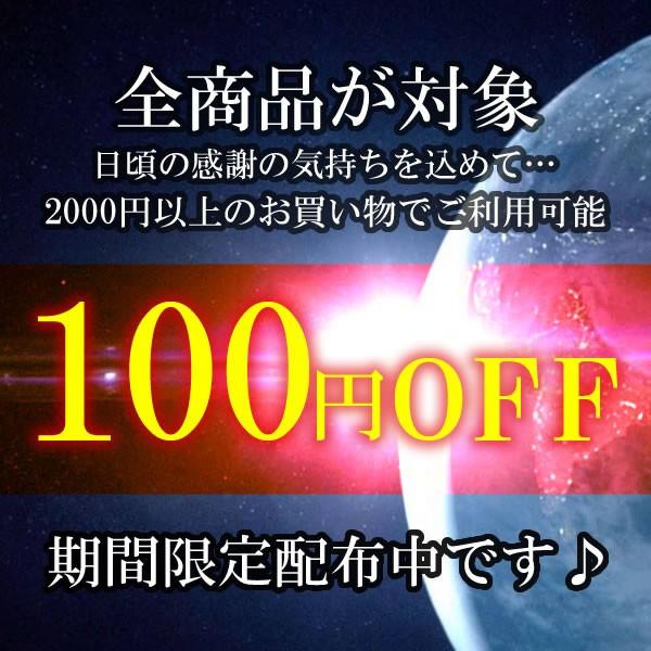 100円引きクーポン♪