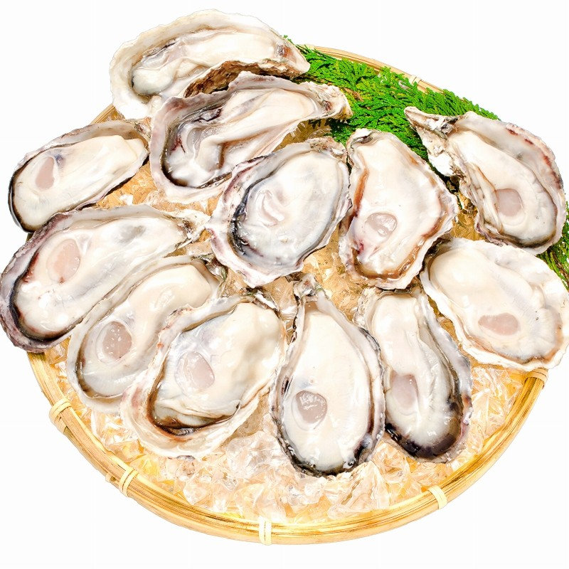 殻付き牡蠣 剥きザル盛り