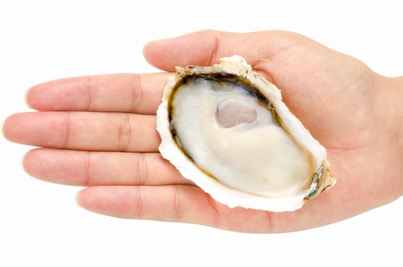 殻付き牡蠣 殻むき手持ち