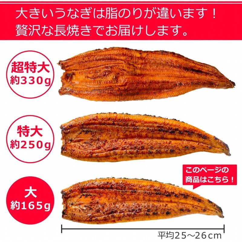 うなぎ蒲焼き サイズ