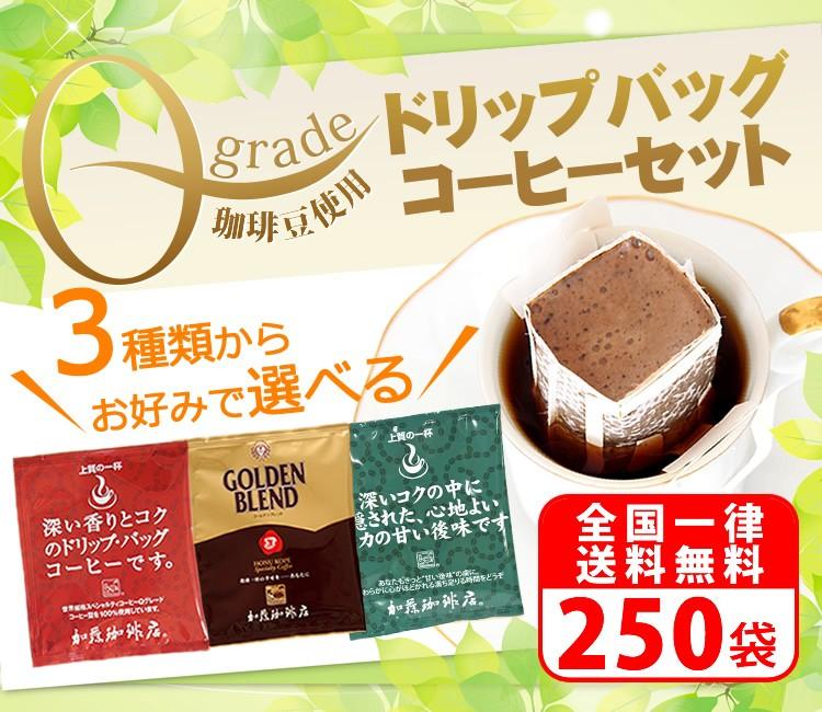 Qグレード珈琲豆使用ドリップバッグコーヒー100袋