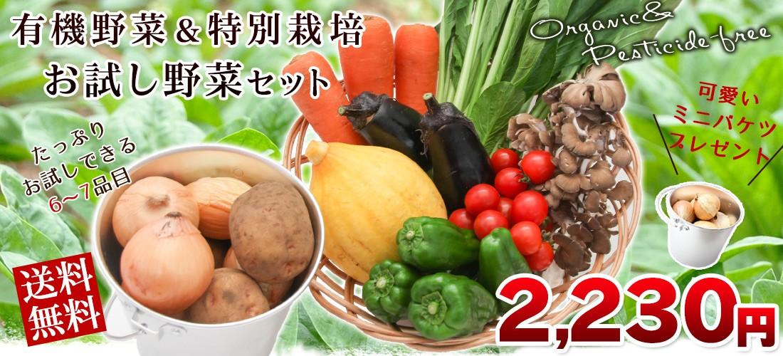 野菜お試しセット