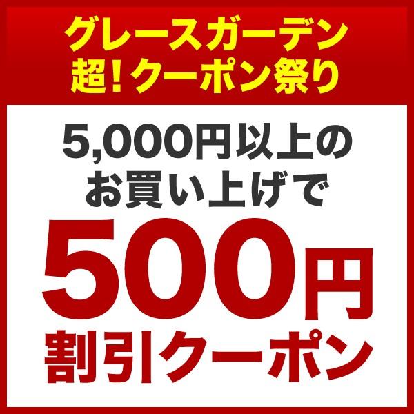 ★☆期間限定!5,000円以上のお買い上げで500円割引クーポン☆★