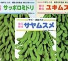 枝豆の種セット