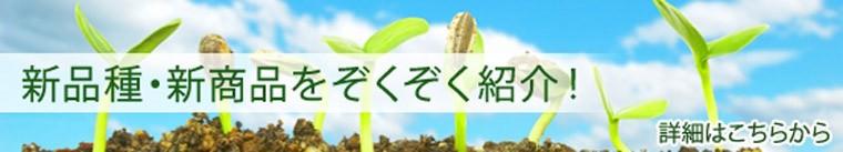 新品種・新商品ぞくぞく紹介!