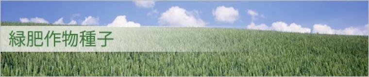 緑肥作物種子