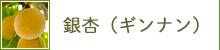 銀杏(ギンナン)