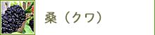 桑(クワ)
