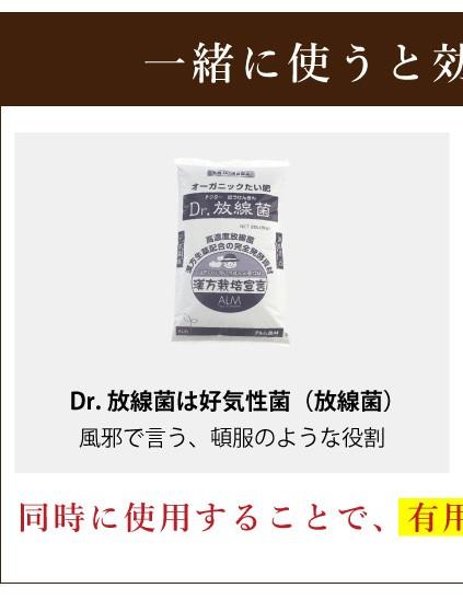 一緒に使うとですでです Dr放線菌