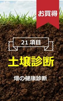 21項目 土壌診断 畑の健康診断