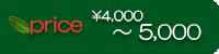 価格4000〜5000