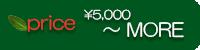 価格5000〜MORE