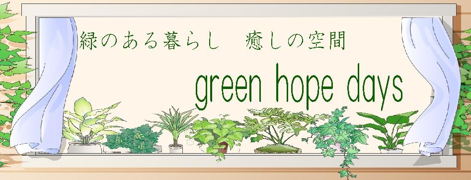 green hope daysは暮らしに彩りと癒しがコンセプトのショップです。