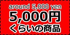 5000yen