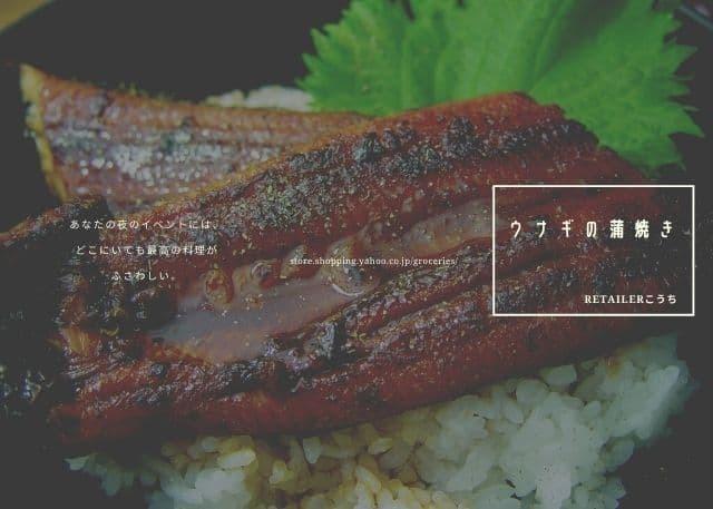 高知県産のウナギの蒲焼きは美味