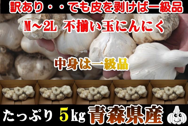 にんにく5kg