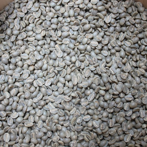 珈琲専門店のコーヒーの生豆