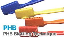 PHB歯ブラシ ウルトラスワーブ 6本セット