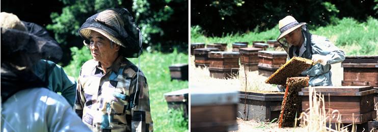 名養養蜂家 青木勇彦と弟子達