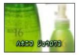 ハホニコ ジュウロクユ(十六油)