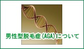 男性型脱毛症(AGA)について
