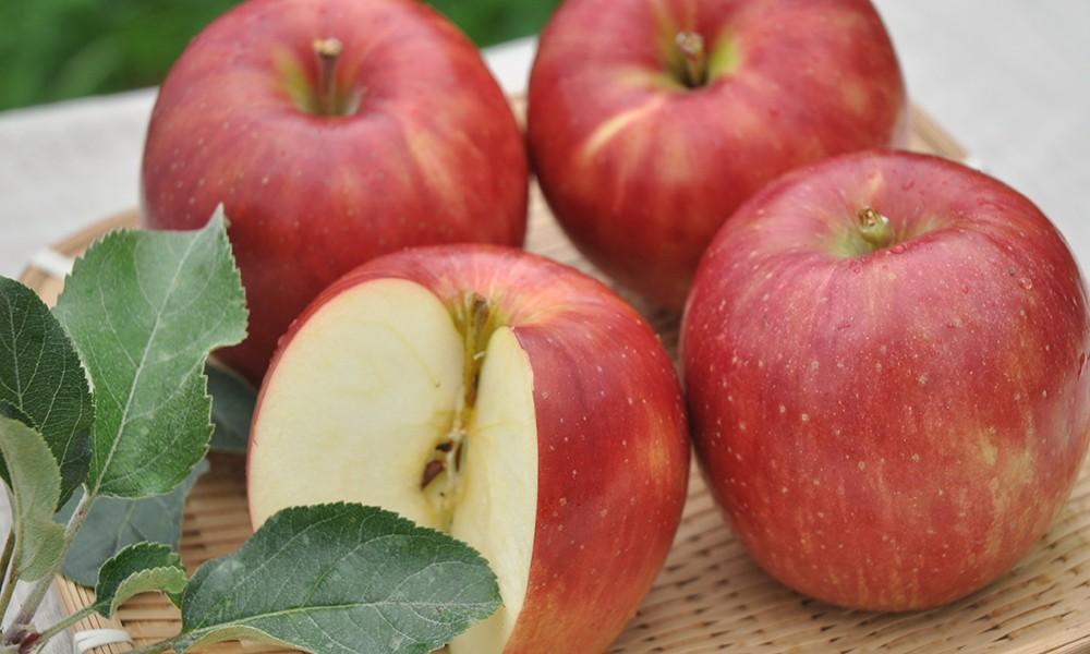 大野農園のりんご