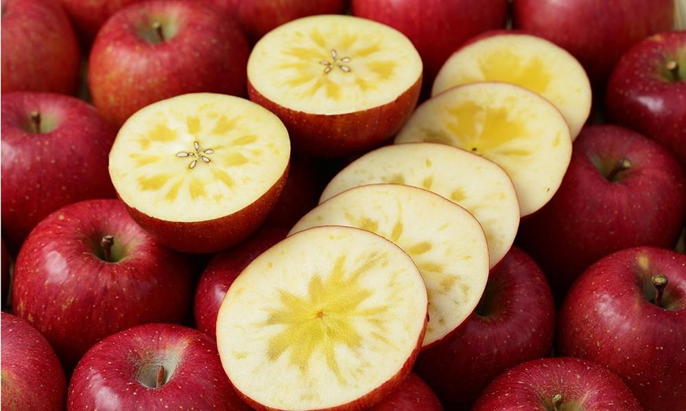大野農園のりんごは最高品質保証