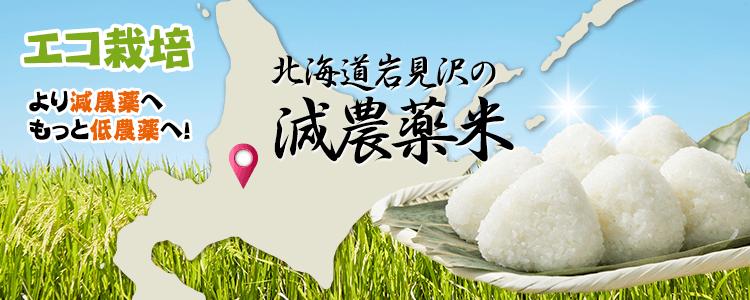 エコ栽培 北海道岩見沢の減農薬米 より減農薬へ!もっと低農薬へ!
