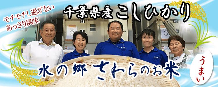 千葉県産こしひかり 水郷さわら米 モチモチし過ぎないあっさり風味