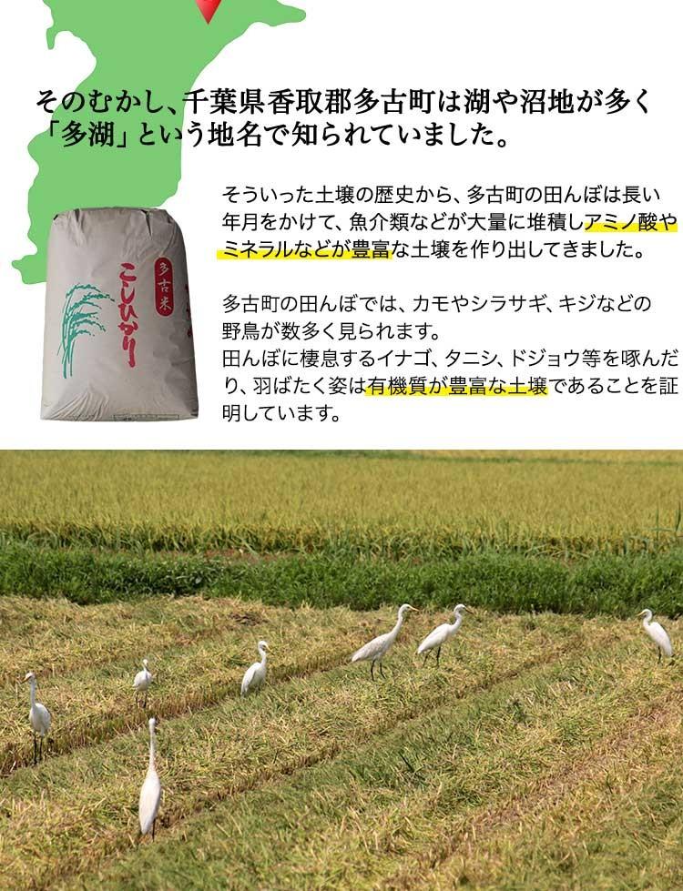 そのむかし千葉県香取郡多古町は湖や沼地が多く「多湖」という地名で知られていました。