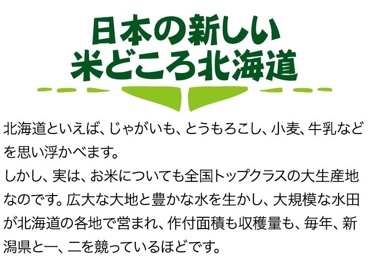 日本の新しい米どころ北海道