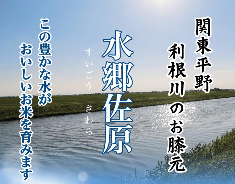 関東平野 利根川のお膝元 水郷佐原 この豊かな水がおいしいお米を育みます
