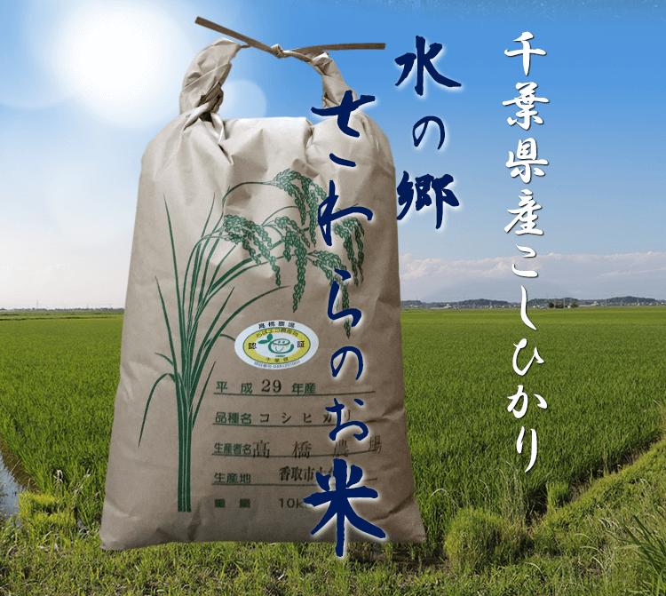 千葉県産こしひかり「水の郷さわらのお米」