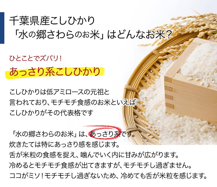千葉県産こしひかり「水の郷さわらのお米」はどんなお米?