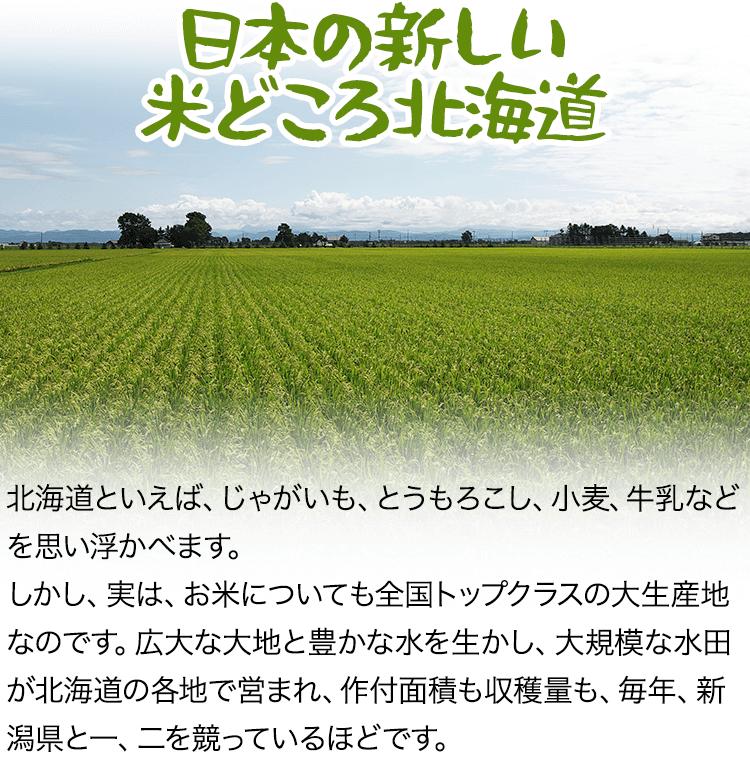 日本の新しい米どろこ北海道
